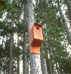 wildlife nest box